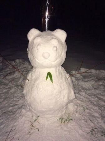 雪ダルマ熊�A.jpg