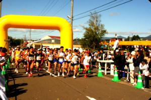 nisekoマラソン.png